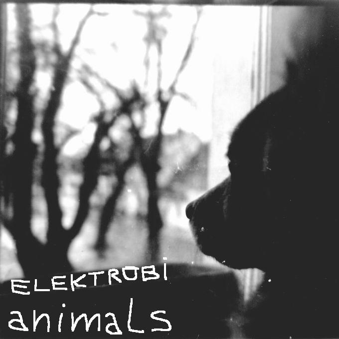 chill04-07 - elektrobi - animals-front