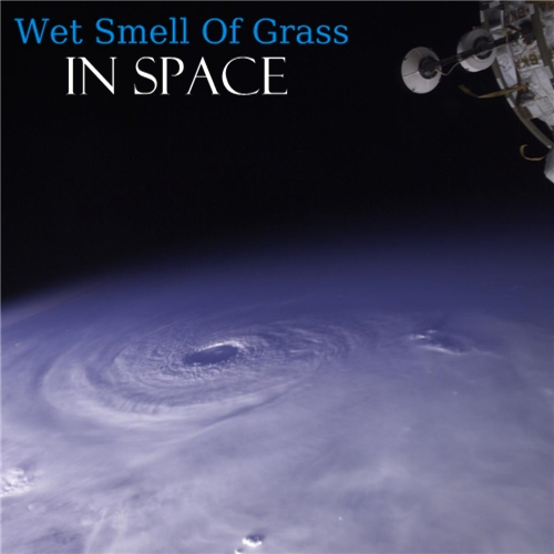 chill34-09 - Wet Smell Of Grass - In Space