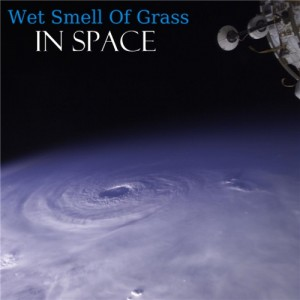 chill34-09-Wet_Smell_Of_Grass_-_In_Space-front